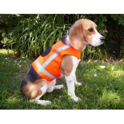 Signalinė liemenė šunims